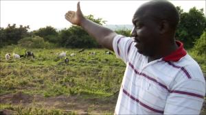 Fred Mawanda nel campo della cooperativa H.T.C.