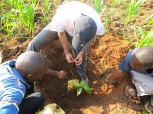 Uganda 2013 (332)